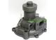Bomba de Agua Tractor Fiat con Motor Iveco